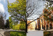 Photo of Le ville polonaise de Cracovie au fil des saisons – time lapse