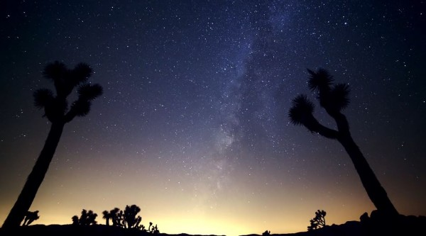 time-lapse-video-joshua-tree