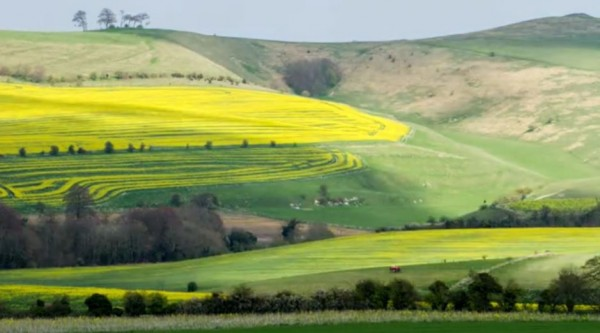journee-wiltshire-time-lapse