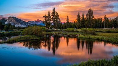 Photo of Photographie du jour #518 : Afternoon Glow on Tuolumne