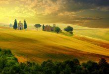 Photo of Photographie du jour #530 : Un été en Toscane