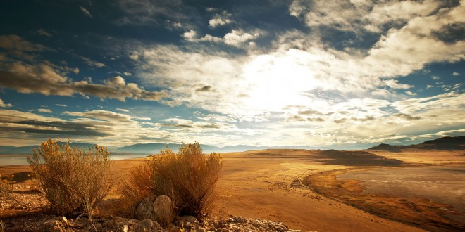 photographie-prairie-mongolie-small