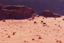 Photo of La Jordanie en time lapse miniature