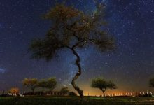 Photo of La beauté de l'Argentine en time lapse