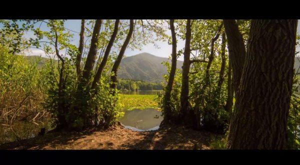 vulture-senza-tempo-time-lapse-italie