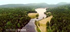 time-lapse-acadia-national-park-tilt-shift
