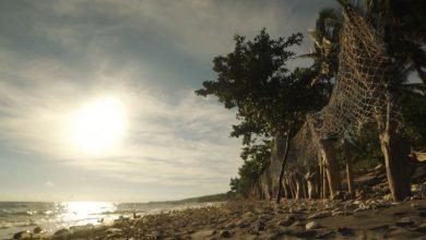Photo of Un voyage culturel à Bali