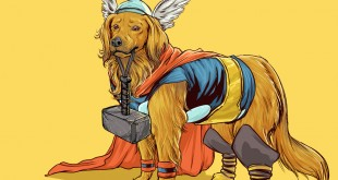 Illustrations Super Heros Marvel Reinvente Chiens Josh Lynch (6)