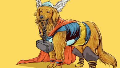 Photo of Les super-héros Marvel réinventés en chiens par Josh Lynch