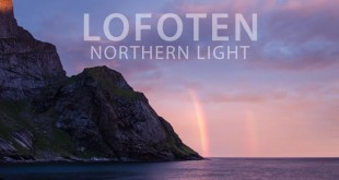 Northern Light Lofoten