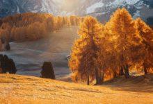 Photo of Photographie du jour #551 : Alpe di Siusi