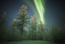 Photo of Photographie du jour #549 : Aurora  in Novy Ourengoï
