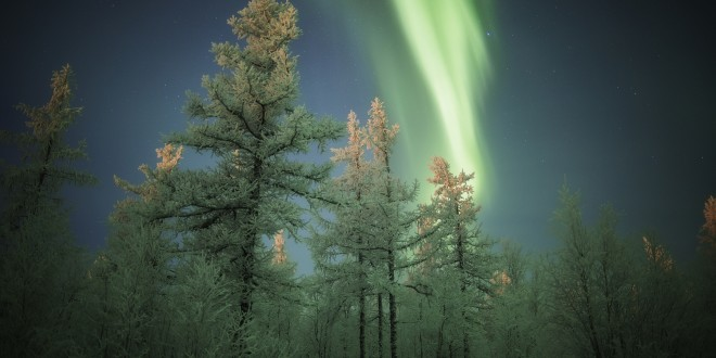 Photographie Aurora In Novy Ourengoi