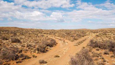 Photo of Le Désert du Karoo comme vous ne l'avez jamais vu