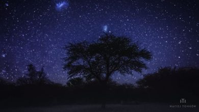 Photo of La beauté du Botswana et de la Namibie en time lapse