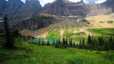 Photo of Photographie du jour #577 : Alpine Meadows
