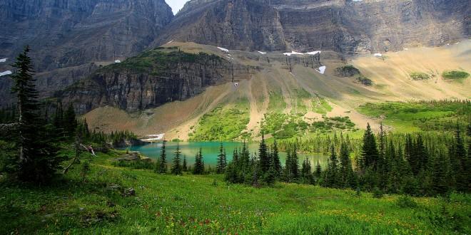 Photographie Alpine Meadows