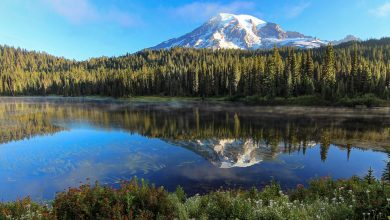 Photo of Photographie du jour #593 : Rainier Reflected