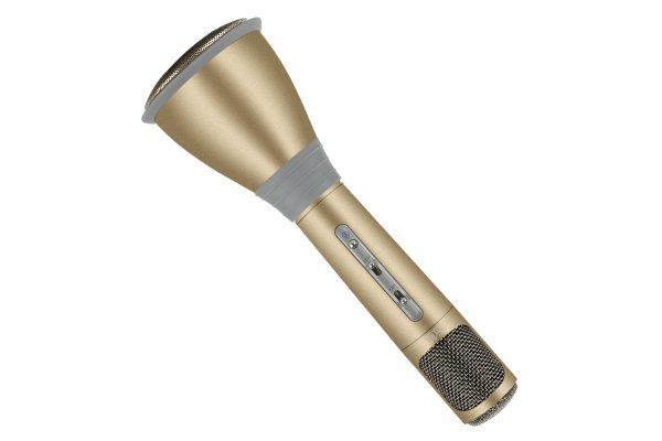 Micro Enceinte Bluetooth Mayhem Karaoke