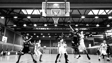 Photo Basket
